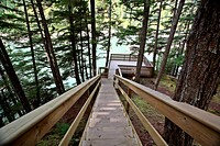 Wooden stairs and viewpoint at Kitsumkalum Provincial Park