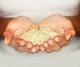 Rice in hands