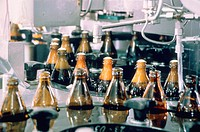 Filling plant of beer in bottles