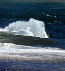 Ice floe in the sea