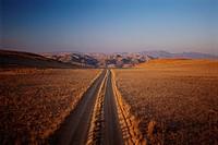 Rural Road in Savaana
