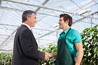 Businessman and gardener shaking hands