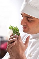 Chef holding some herbs