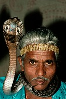 The snake charmer Master Bangali poses with a cobra. India.