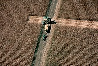 Aerial View of Corn Harvest