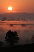 Sunrise over Fog Covered Woernitz River in Germany