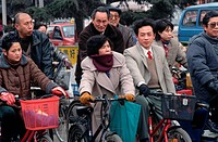 Bicyclists Waiting on the Street