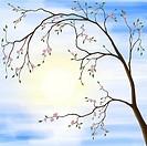 Illustration of sakura cherry blossom in spring sunrise scenery against the sun