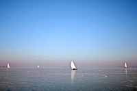 Traditional dutch: Ice sailing on a cold winterday on the Gouwzee in the Netherlands