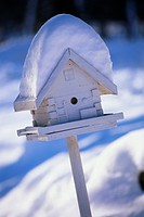 Snow on Birdhouse
