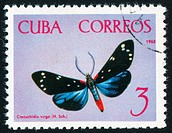 poststamp butterfly