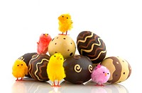 chocolate easter eggs with chicks