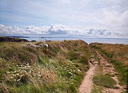 View from Pembrokeshire coastal path, the stretch between St Davids and Solva,west Wales,Uk