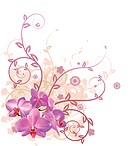 A very stylish vector floral background illustration with pink orchid flowers.