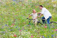 Father and son riding bicycles in wildflower field