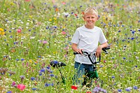 Portrait of smiling boy in wildflower field
