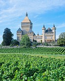 Switzerland, Europe, Vaud, Vufflens, castle, vineyard
