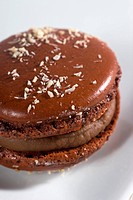 A chocolate macaroon with grated coconut