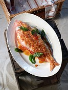 Grilled snapper with herbs and a lemon glaze