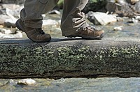 Lungau, Austria, Hiker walking on log above creek