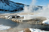 Cliff Geyser, Black Sand Basin, Winter, Yellowstone NP, WY