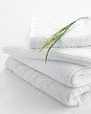Stack of clean towels with plant on top