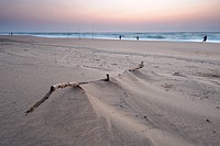 Driftwood and silhouetted fishermen on beach at dawn, Estuary Beach, St Lucia, Kwazulu_Natal, South Africa