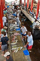 Fresh fish market filled with customers and days catch, Mahe, Seychelles