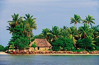 A traditional thatched roof house and palm trees along the coastline.