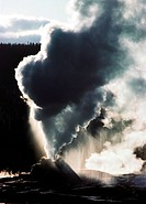 A thermal geyser erupting with steam and boiling water.