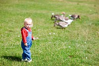 child and geese