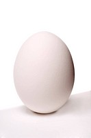 A white egg on a white surface