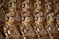 Bhuddha images
