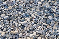 Background of sea stones