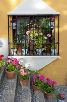 Steps, flowers and wrought iron Spanish window, Ronda, Andalucia, Spain
