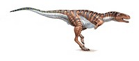 Tarascosaurus salluvicus. This dinosaur lived in France during the Campanian stage of the early cretaceous period.