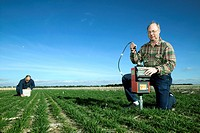 Agricultural soil research. Researchers using a neutron probe foreground and time domain reflectometry to measure soil water use by growing winter whe...