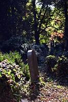 A gravestone in a cemetery, Vienna, Austria