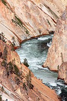 Grand Canyon of the Yellowstone and Yellowstone River, Wyoming, USA