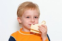 Small boy eating healthy sandwich