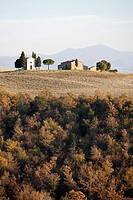 landscape, autumn, san quirico d´orcia, siena province, tuscany, italy, europe