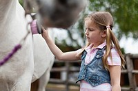 Girl brushing horse's coat