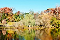 Mirrored image of beautiful multicolored autumn scene in Pennsylvania