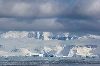 Antarctic Peninsula, Neko Harbour. Ice floes and icebergs in front of mountain ridge. Low cloud formation and fog.