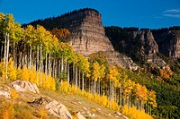 Fall color in the Rocky Mountains