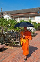 Luang Prabang, Laos. Young monk walking street with umbrella