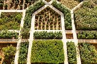 Amber Fort Garden