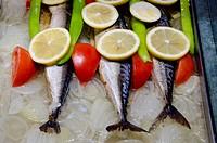 Turkey, Istanbul. Traditional Turkish food. Fresh fish with lemon, onion & tomato.