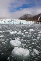 Norway, Svalbard, Spitsbergen Island, Icebergs floating near face of Hans Glacier in Hornsund Sound on summer morning