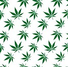 cannabis seamless pattern extended